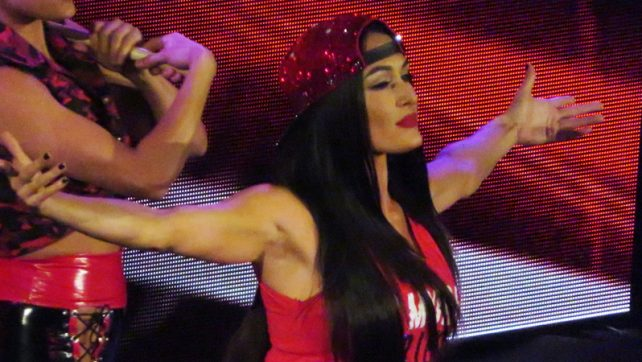 Report: Nikki Bella Resigned To Fate Of Ending Up With Someone Famous